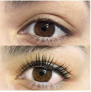 arxegoz beauty lash lift before and after